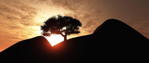 魂が「人生の困難」を通して「私」に託すこと