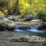 人生の恩恵は「生命の流れ」から来る
