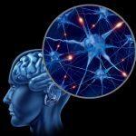 人工知能の進化で【人間の真の力】が明らかになる