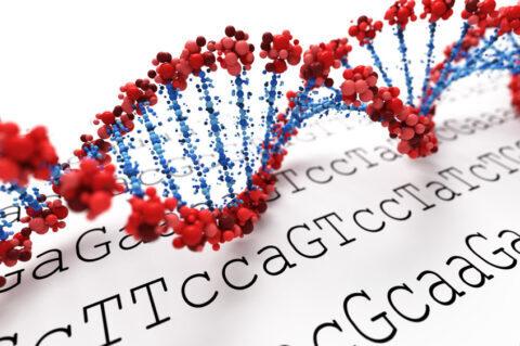 エピジェネティクス(2):DNAに変化を起こし、魂のギフトが開花する最新の方法とは