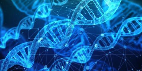 エピジェネティクス(1):不幸の家族連鎖解放の科学