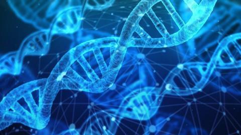 エピジェネティクス:不幸の家族連鎖解放の科学